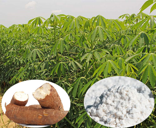 20t/d cassava flour production line settled in Africa