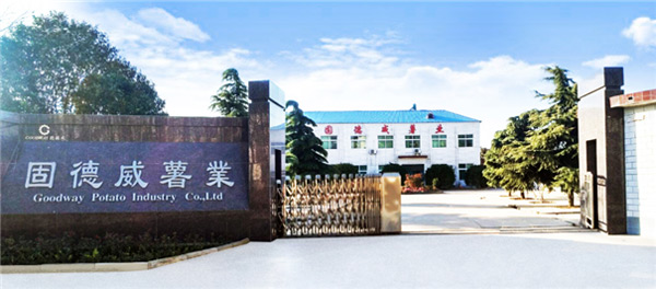 The starch processing equipment manufactured by Goodway (China) - Extrusion Pulverizer, has been the first in the industry to be promoted and certified by the Ministry of Agriculture, and has become a key promotion product of the Ministry of Agriculture and has received financial subsidies from the central government. The company currently has 35 inventions of various types and has won 6 provincial and ministerial-level scientific and technological achievements awards. Leaders at all levels and all walks of life care and support of friends, Goodway potato&cassava processing machinery industry has developed into a very well-known brand influence.