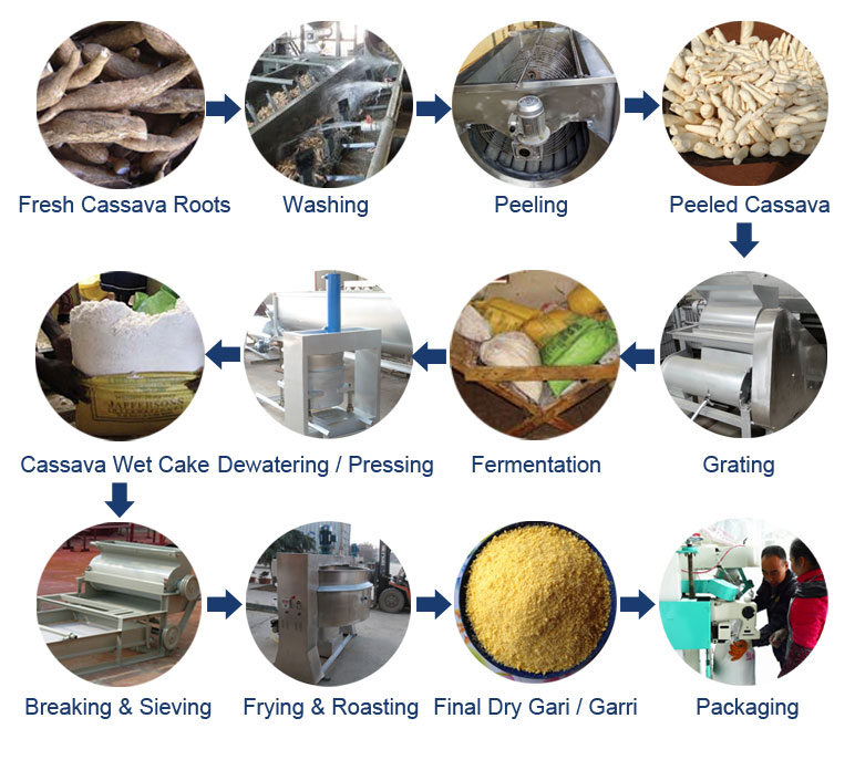 Cassava Gari / Garri Production Process
