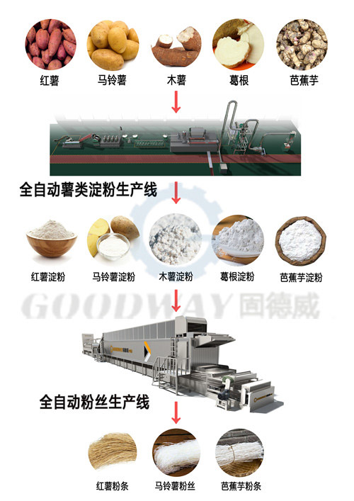 Three Large Sweet Potato Processing Lines are all Delivered