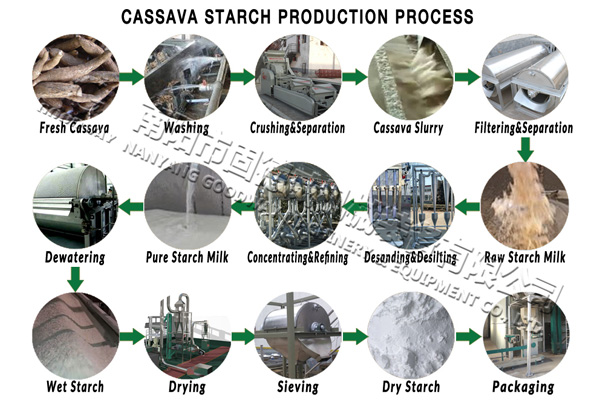 cassava starch production process