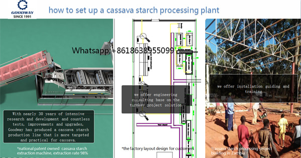 How to Set Up a Cassava Starch Processing Plant