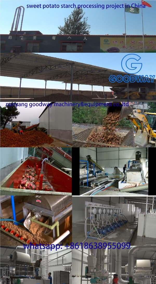 Sweet Potato Starch Processing Project in China