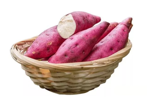 What Equipment Should Be Included in the Whole Producting Line of Sweet Potato Starch?